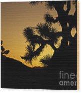 New Photographic Art Print For Sale Joshua Tree At Sunset Wood Print