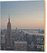 New York City - Empire State Building Wood Print