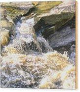 Niagara Escarpment 2 Wood Print
