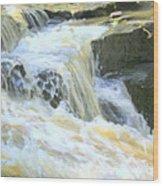 Niagara Escarpment 4 Wood Print