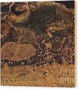 Nine Mile Canyon Wood Print
