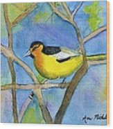 Northern Oriole Wood Print