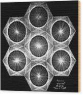 Nuclear Fusion Wood Print