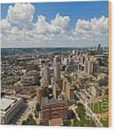 Oakland Pitt Campus With City Of Pittsburgh In The Distance Wood Print