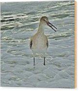 Ocean Bird Wood Print