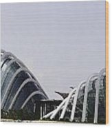 Oil Painting - Both Of The Conservatories Of The Gardens By The Bay In Singapore Wood Print