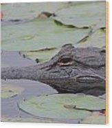 Okefenokee Gator Wood Print