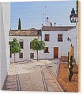 Old Town In Cordoba Wood Print