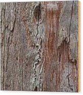 Old Wood Wood Print