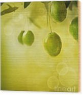Olives Design Background Wood Print by Mythja  Photography