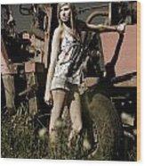On The Farm At Dusk Wood Print