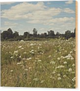On The Summer Meadow. Russia Wood Print