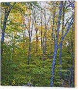On Top Of Bald Mountain Wood Print