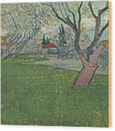 Orchards In Blossom Wood Print