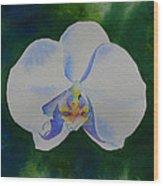 Orchid Dance 2 Wood Print