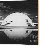 Oscar Niemeyer Architecture- Brazil Wood Print