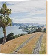 Otago Peninsula Coastal Landscape Dunedin Nz Wood Print