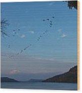 Otsego Evening Takeoff II Wood Print