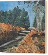 Paesaggio Wood Print by Niki Mastromonaco