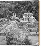 Palenque City Wood Print