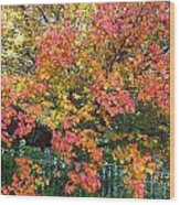 Pallette Of Fall Colors Wood Print