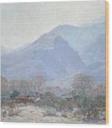 Palm Springs Landscape With Shack Wood Print by John Frost