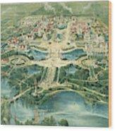 Pan-american Exposition Wood Print