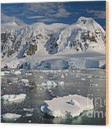 Paradise Bay, Antarctica Wood Print