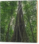 Parasite Consuming A Tree Wood Print