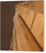 Paris France - Notre Dame De Paris - 011310 Wood Print by DC Photographer