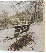 Park Bench In The Snow Covered Park Overlooking Lake Wood Print