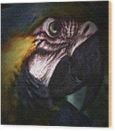 Parrot 9 Wood Print