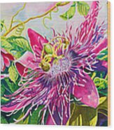 Passionflower Party Wood Print