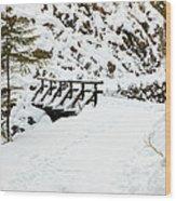 Pathway Through The Snow Wood Print