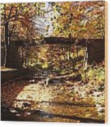 Peace Wood Print by Lucy D