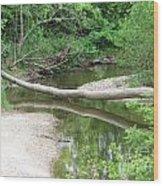 Peaceful Crossing Wood Print