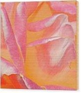 Peachy Pink Rose Wood Print