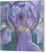 Pearl Of The Iris Wood Print