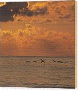 Pelican Sunrise Wood Print