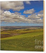 Pendleton Valley Wood Print