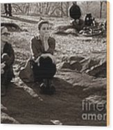 Pensive - In Central Park Wood Print