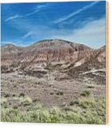 Petrified Forest National Park Wood Print