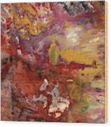 Petrified Wood Detail Wood Print