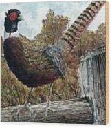 Pheasant On Fence Wood Print