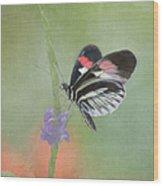 Piano Key Butterfly1 Wood Print