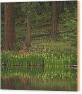 Pierre Lake Wood Print