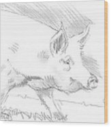 Pig Drawing Wood Print