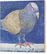 Pigeon On Snowy Wall Wood Print