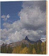 Pilot And Index Peaks   #9246 Wood Print