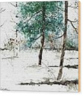 Pine Woods Wood Print